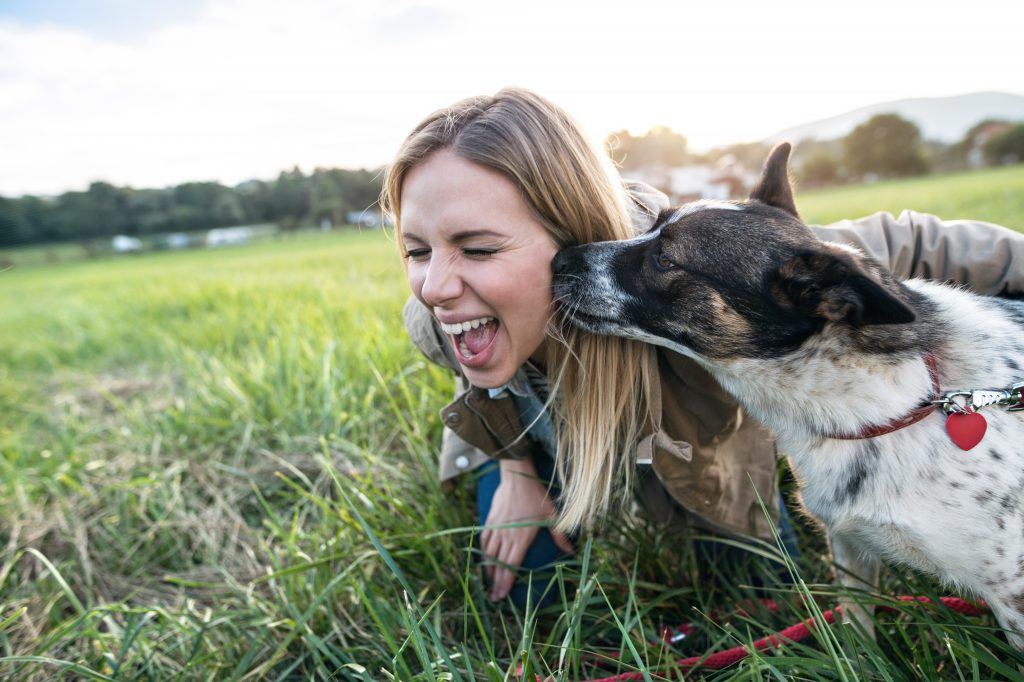 Woman in the grass with dog licking her face